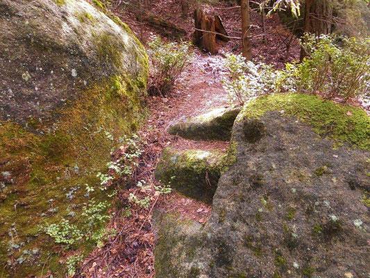Wenige Meter neben dem unteren Ausgang der JP - Schlucht zwei eingemeißelte Felsstufen
