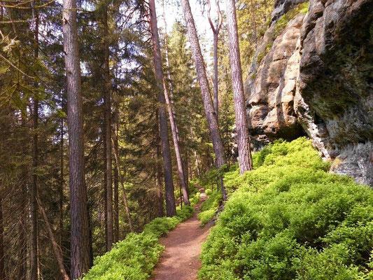 Am Wanderweg oberhalb vom Kerbensteig Teil 3