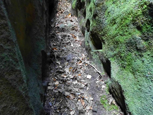Balkenfalze der ehemaligen Stiege zur Bärenhöhle. Mit etwas Klettergeschick kann man auch heute noch in den Löchern hochklettern
