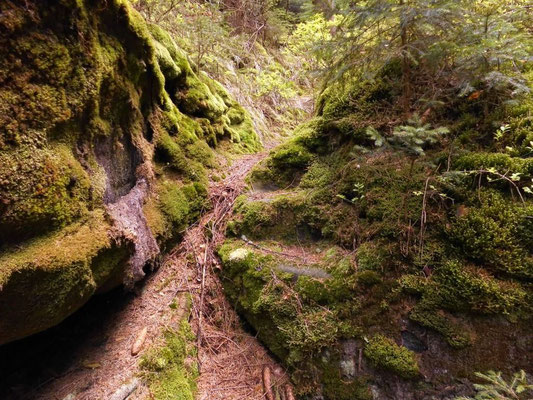 Steinerne Stufen im unteren Teil der Schlucht