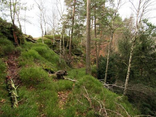 Fremdenweg Abstieg zu den letzten 200 Metern vor der Prebischtorgaststätte