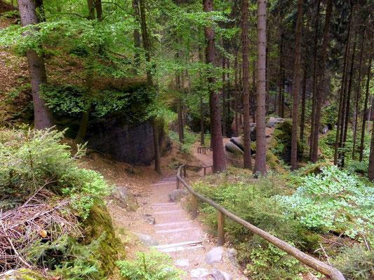 Weg von Hinterhermsdorf zur Oberen Schleuse