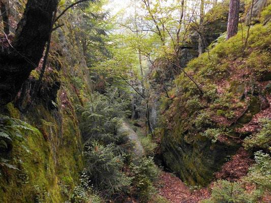 """JP - Schlucht, rechts unten an der grünen Felswand die Jahreszahl 1898 und """"JP"""", gegenüber nochmal """"JP""""."""
