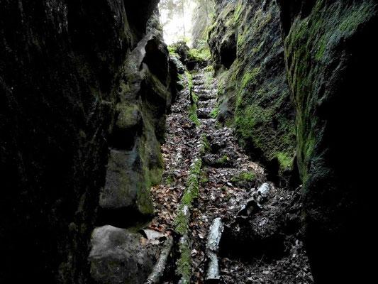 Treppe von oben runter zur Bärenhöhle