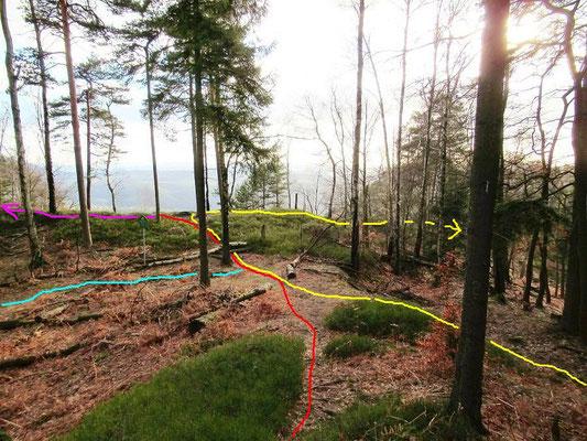 Zwischen Grenzstein 8/13 und 8/12. rot/lila = Grenzweg/Entenpfützenweg, gelb = Fremdenweg zum Prebischtor, blau = Weberschlüchte