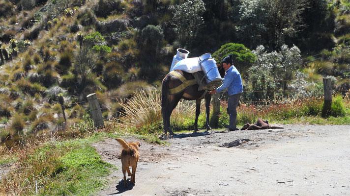 Kultur Kolumbien Landwirtschaft Bauern Reisen