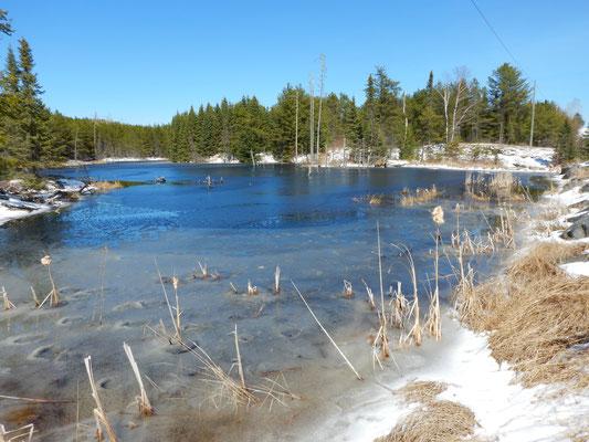 links und der rechts der Strasse sind solche Seen