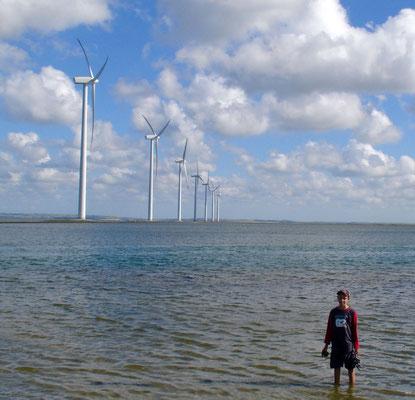 Faszination Windkraft - Windpark in Dänemark