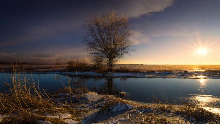 Ochsenmoor_Januar 2017   All images: © Klaus Heuermann