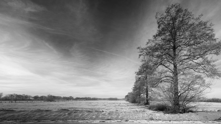Recker Moor_Januar 2017   All images: © Klaus Heuermann