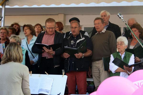 Mitglieder der Chorgemeinschaft '82 (Foto: Bernhard Sennekamp)