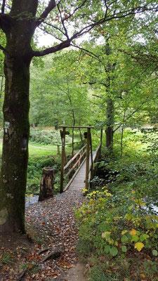 Brücke (Steg) über die Kleine Nister