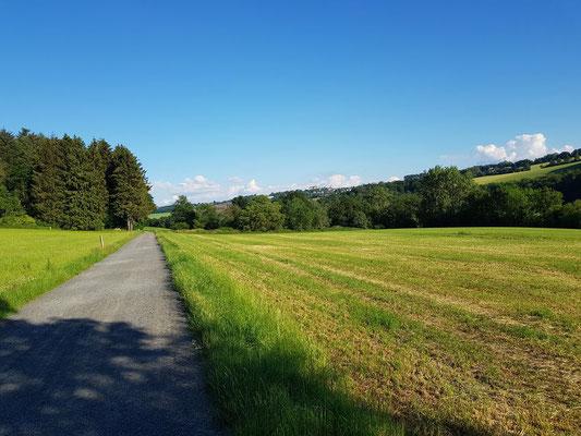 .... und noch einmal Blick Richtung Hachenburg und Umgebung
