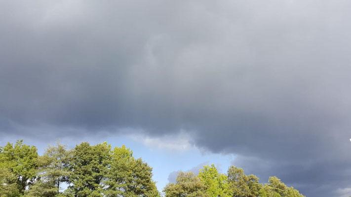 Sonne-Wolken-Mix - es wird herbstlich