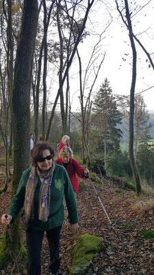 Unterwegs auf verwunschenen Pfaden oberhalb von Scheuerfeld