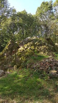 Am Hümmerich Quarzitischer Sandstein Millionen Jahre alt am Geotop Druidensteig / Molzhain