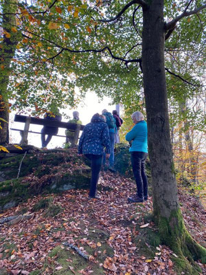 Gesundheitswanderung im Westerwald oberhalb von Limbach am Kappanöll