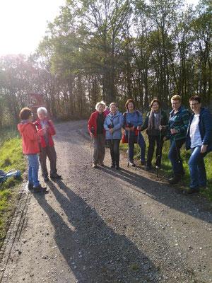 Die Gesundheitswandergruppe bei der Runde um Dauersberg bei bestem Wanderwetter