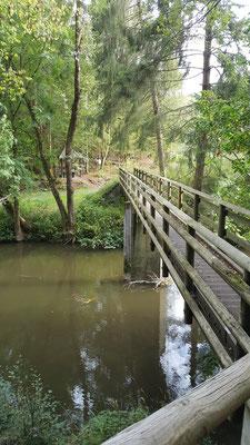 Brücke (Steg) über die Große Nister