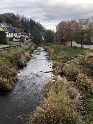 Start der Gesundheitswanderung im Westerwald vom Wanderparkplatz an der Kleinen Nister