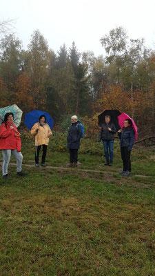 Gesundheitswandergruppe eine starke Truppe trotzt dem Regen