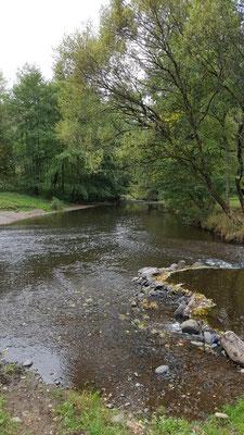 Zufluss der Kleinen Nister (ca. 25 km Länge) in die Große Nister (ca. 65 Km Länge / Quelle auf der Fuchskaute)