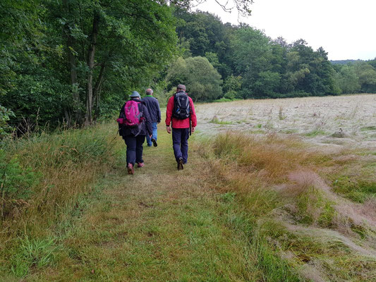 Wandergruppe After Work Walk unterweg in Richtung Limbach