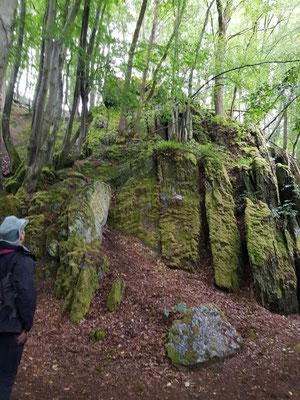 Limbacher Klamm, ein schöner kleiner Pfad für Insider längs des Westerwald-Steigs