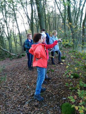 Erklärungen der Gesundheitswandergruppe rund um Dauersberg - was gibts denn dort zu sehen?