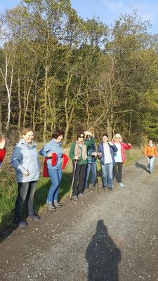 Die Gesundheitswandergruppe auf der Runde um Dauersberg ist bei bestem Wetter unterwegs