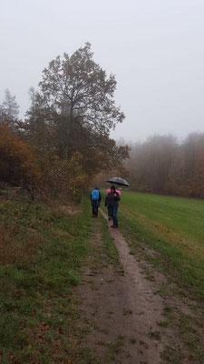 unterwegs im Regen rund um Gebhardshain