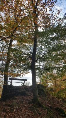 Am Kappanöll - Gesundheitswanderung Limbach Westerwald