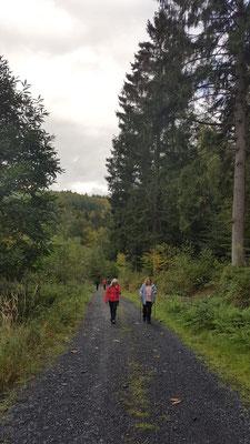 Gesundheitswandergruppe vom Wilhelmsteg aus auf Tour 25.09.19