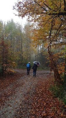 unterwegs trotz Regen