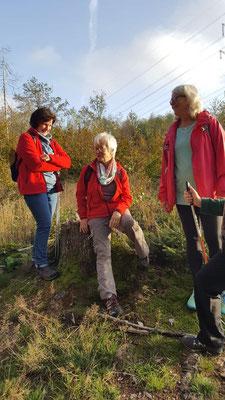 Gesundheitswandergruppe Runde um Dauersberg 23.10.2019