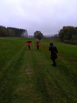 Gesundheitswanderung 16.10.19 im strömenden Regen in Richtung Steinerother Kopf unterwegs