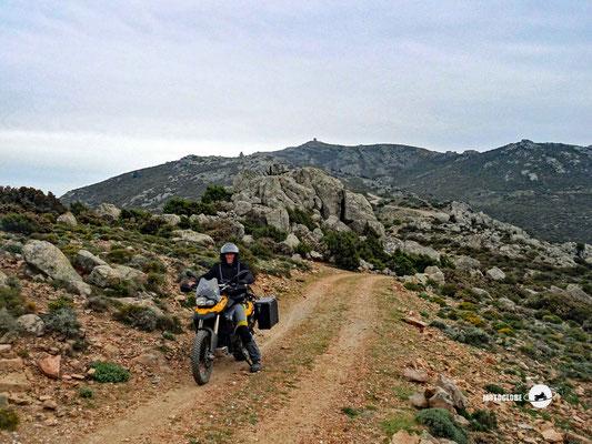 Auf dem Monte Olinie