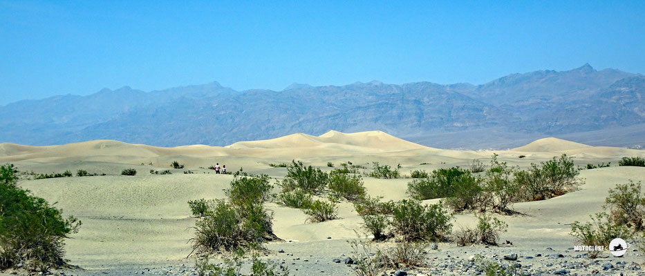 Die Mesquite Sanddünen