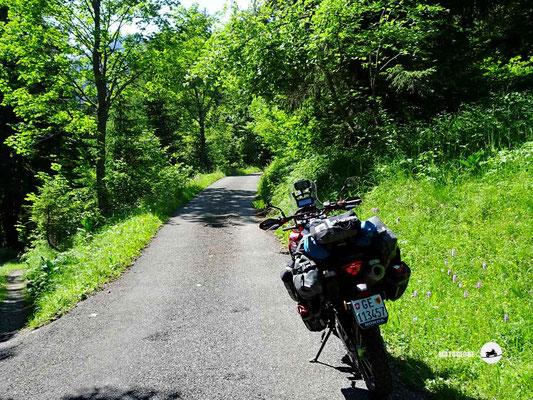 Strässchen zum Pierre du Moëllé Pass - Motorglobe Motorradtest Honda CRF300Rally