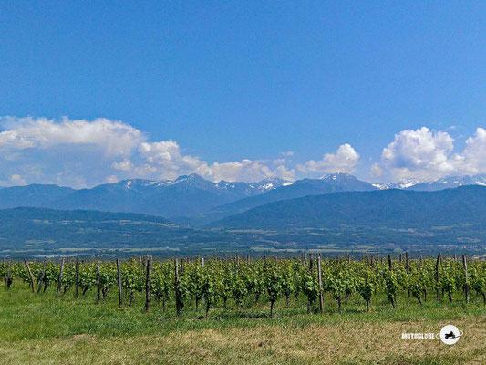 Die französischen Alpen kommen ins Blickfeld