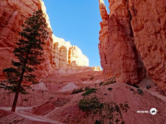 Der Wanderweg führt uns tief in den Canyon hinein