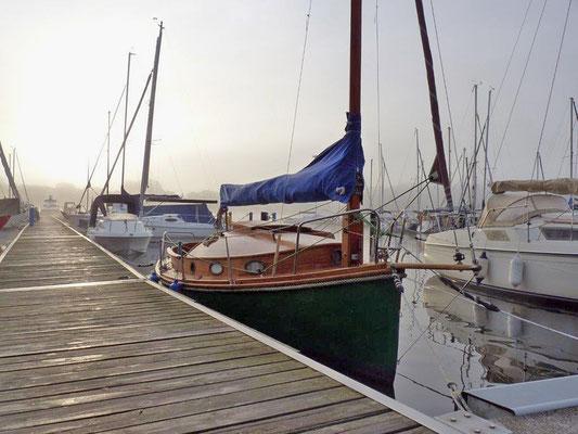 "Blickfang im Hafen: Seezunge ""Visby"""