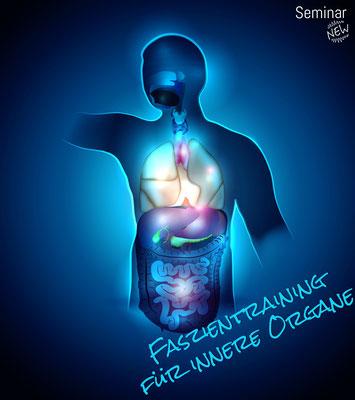 Innere Organe - Behandlung und Automobilisation