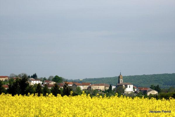 Le village de Harsault.  ( Vosges )