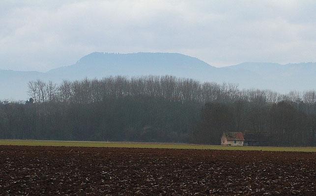 Samedi   03 décembre 2011 La cabane des chasseurs à Illhaeusern ( Alsace 68 )