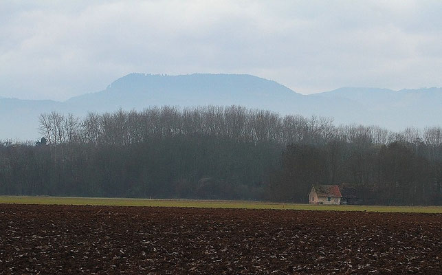 Le 03/12/2011 La cabane des chasseurs à Illhaeusern ( Alsace 68 )