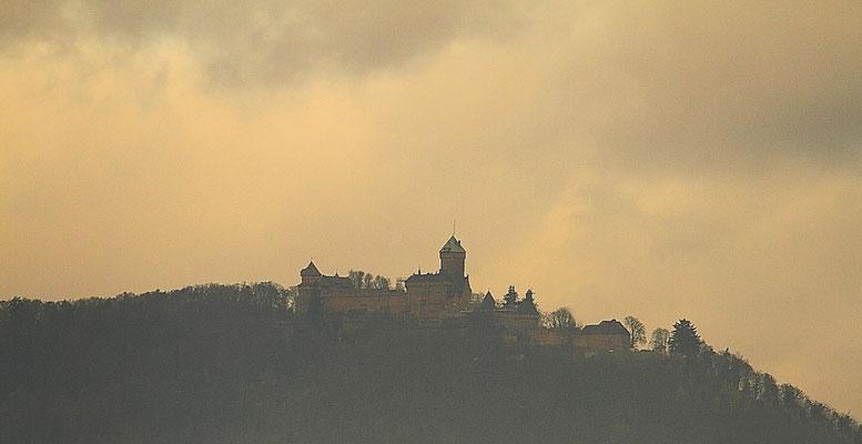 Le 03/12/2011 Le château du Haut Koenigbourg.