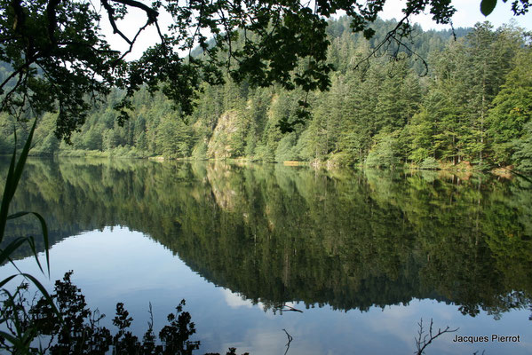 Le lac de Retournemer.  ( Hautes Vosges )