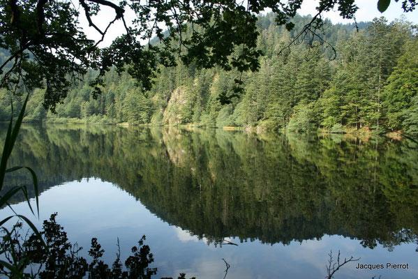 Le 15/06/2012  Le lac de Retournemer.  ( Hautes Vosges )