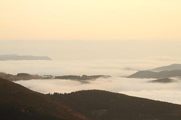 Le 26/11/2011 Mer du nuage au Hohneck ( Hautes Vosges )